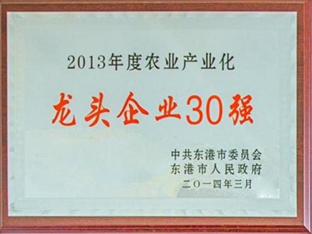 2013年度农业产业化龙头企业30强