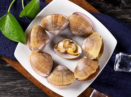 青柳蛤(黄蚬子)